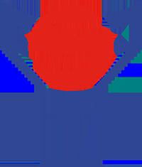 Logo der färöischen Fußballnationalmannschaft
