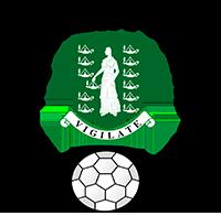 Logo der Fußballnationalmannschaft der Britischen Jungferninseln