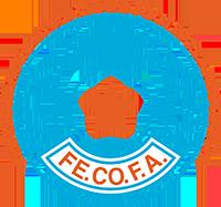 Logo der Fußballnationalmannschaft der Demokratischen Republik Kongo