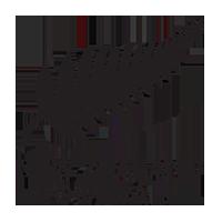 Logo der neuseeländischen Fußballnationalmannschaft