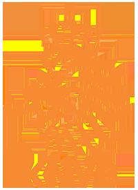 Logo der niederländischen Fußballnationalmannschaft