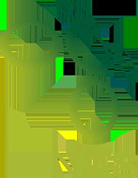 Logo der slowenischen Fußballnationalmannschaft