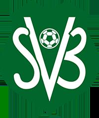Logo der surinamischen Fußballnationalmannschaft