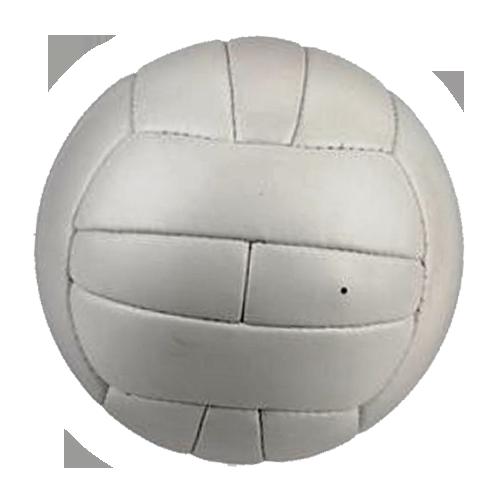 "WM Ball ""Top Star"" der WM 1958"